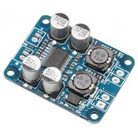 Mono Digital Audio Amplifier Module 60W - TPA3118