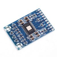 Stereo Digital Audio Amplifier Module 2X50W - TPA3116